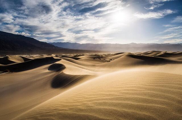 Umstrittenes Wüstenprojekt verliert weiteren Investor