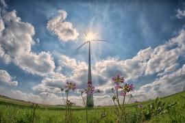 Alles öko oder was – warum Ökostrom nicht automatisch besser ist