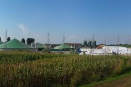 Biogas kämpft mit sich änderndem Ruf