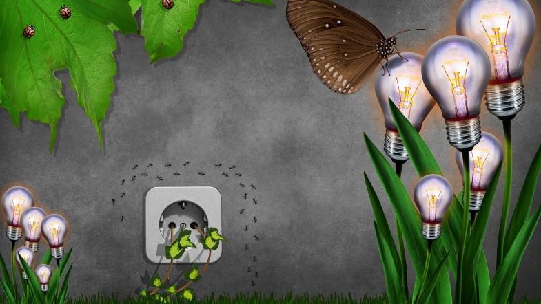 Tipps und Tricks zum Thema Energieverbrauch